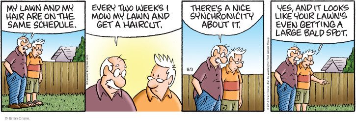 Comic Strip Brian Crane  Pickles 2014-09-03 baldness