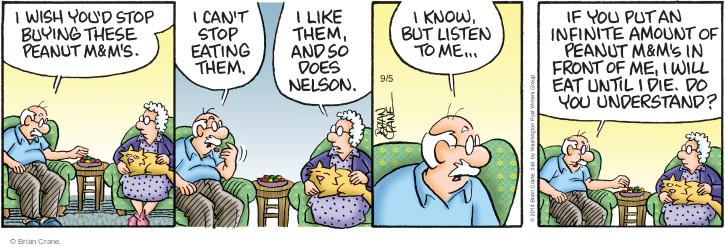 Comic Strip Brian Crane  Pickles 2014-09-05 understand