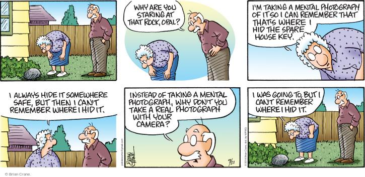 Comic Strip Brian Crane  Pickles 2014-09-21 take