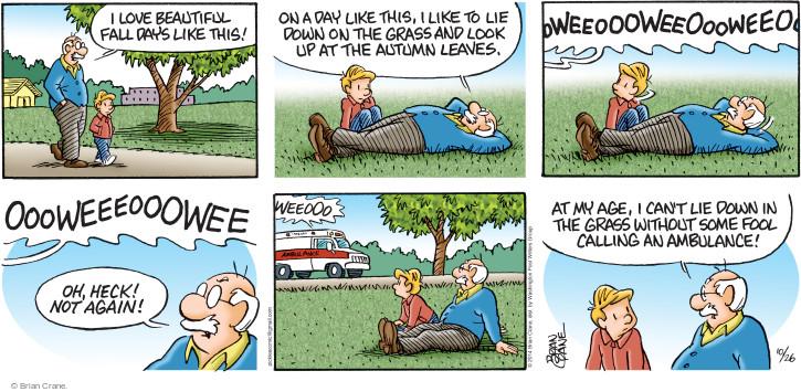 Comic Strip Brian Crane  Pickles 2014-10-26 leaf