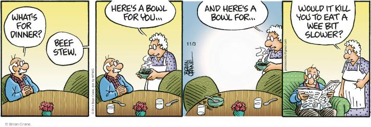 Comic Strip Brian Crane  Pickles 2014-11-03 speed