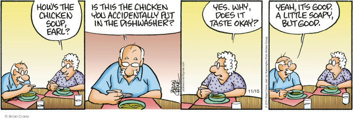 Comic Strip Brian Crane  Pickles 2014-11-15 dishwasher