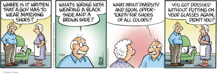 Comic Strip Brian Crane  Pickles 2014-11-21 guy