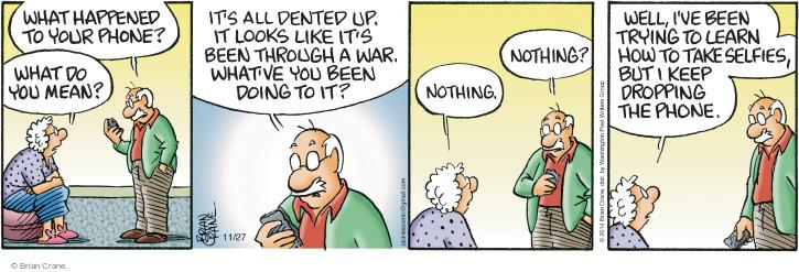 Comic Strip Brian Crane  Pickles 2014-11-27 smartphone