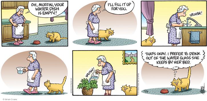 Comic Strip Brian Crane  Pickles 2014-12-07 watering plant