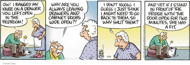 Comic Strip Brian Crane  Pickles 2014-12-09 pet