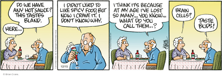 Comic Strip Brian Crane  Pickles 2014-12-15 spicy food
