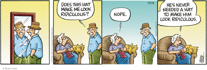 Comic Strip Brian Crane  Pickles 2014-12-16 hat