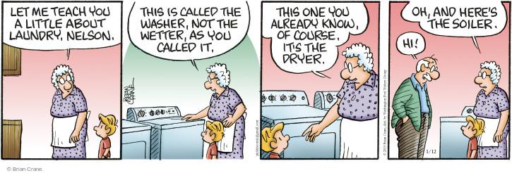 Comic Strip Brian Crane  Pickles 2015-01-12 wash clothes