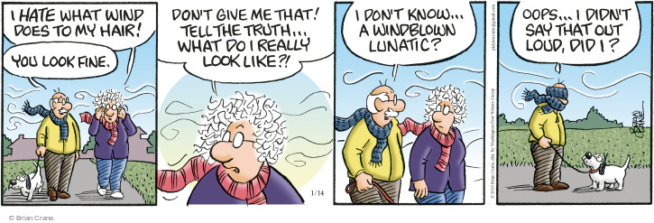Comic Strip Brian Crane  Pickles 2015-01-14 hairstyle
