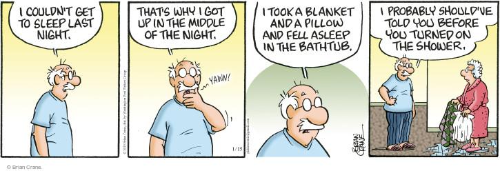 Comic Strip Brian Crane  Pickles 2015-01-15 shower