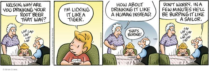 Comic Strip Brian Crane  Pickles 2015-01-23 tiger