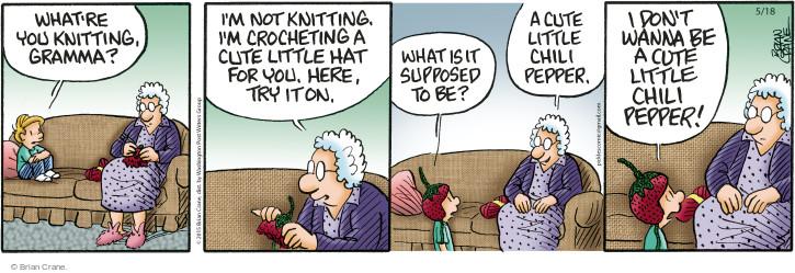 Comic Strip Brian Crane  Pickles 2015-05-18 hat