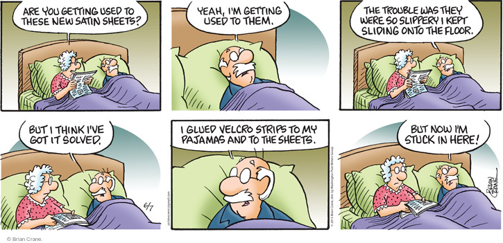 Comic Strip Brian Crane  Pickles 2015-06-07 bedding
