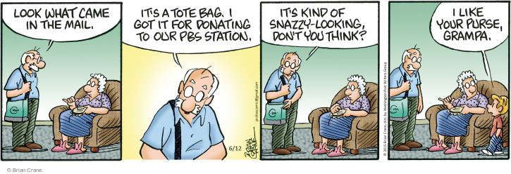 Comic Strip Brian Crane  Pickles 2015-06-12 handbag