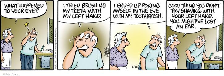 Comic Strip Brian Crane  Pickles 2015-06-18 left hand