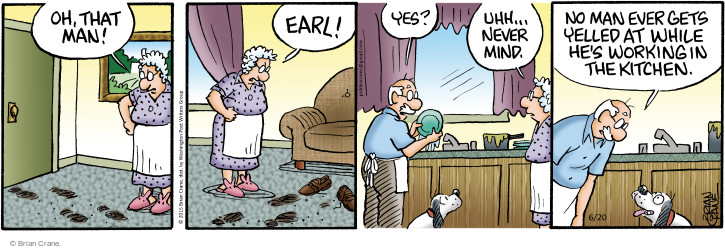 Comic Strip Brian Crane  Pickles 2015-06-20 man