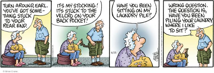 Comic Strip Brian Crane  Pickles 2015-06-25 Earl