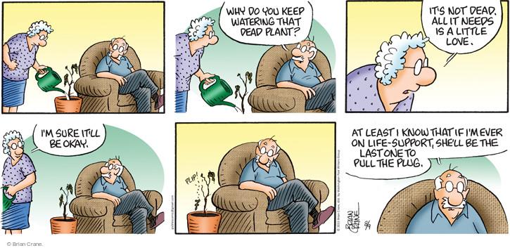 Comic Strip Brian Crane  Pickles 2015-08-09 watering plant