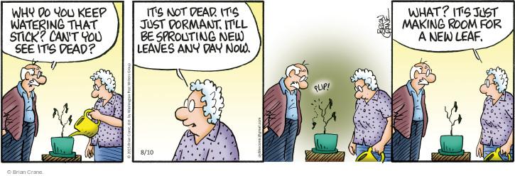 Comic Strip Brian Crane  Pickles 2015-08-10 watering plant