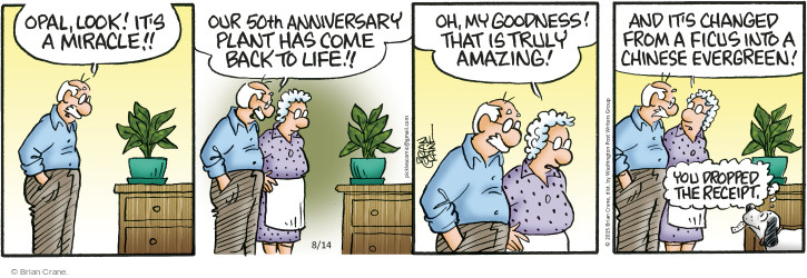 Comic Strip Brian Crane  Pickles 2015-08-14 drop it