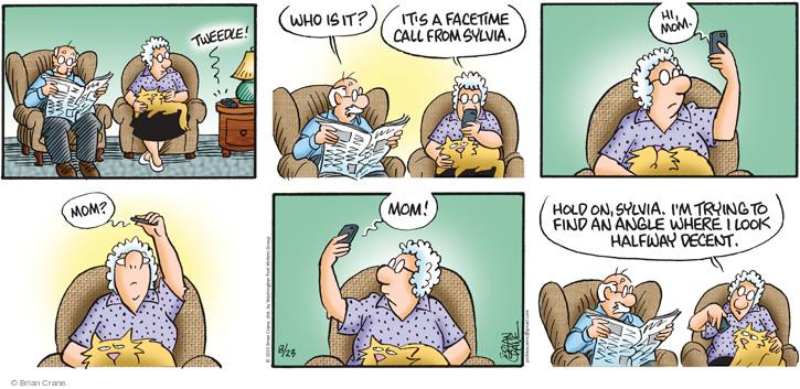 Comic Strip Brian Crane  Pickles 2015-08-23 phone call