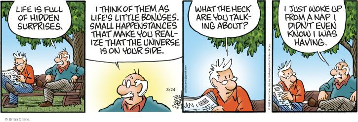 Comic Strip Brian Crane  Pickles 2015-08-24 universe