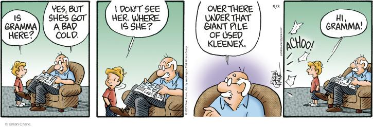 Comic Strip Brian Crane  Pickles 2015-09-03 pile