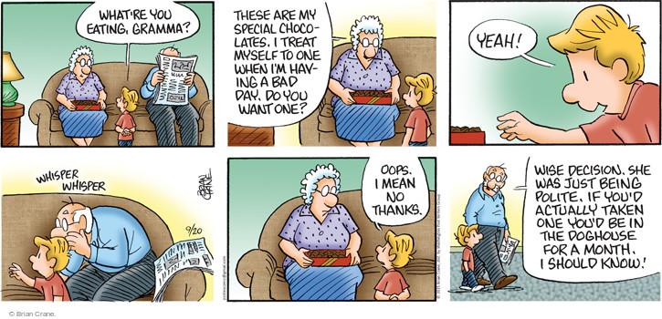 Comic Strip Brian Crane  Pickles 2015-09-20 chocolate