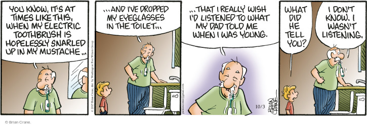 Comic Strip Brian Crane  Pickles 2015-10-03 grooming