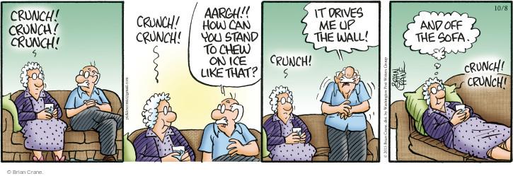 Comic Strip Brian Crane  Pickles 2015-10-08 ice