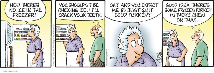 Comic Strip Brian Crane  Pickles 2015-10-12 ice