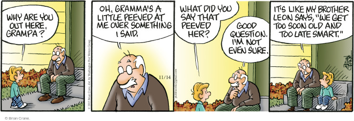 Comic Strip Brian Crane  Pickles 2015-11-14 get old