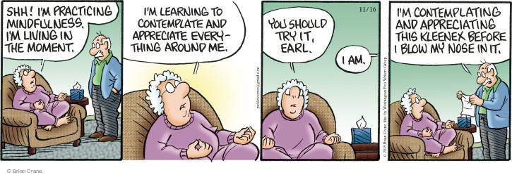 Comic Strip Brian Crane  Pickles 2015-11-16 awareness