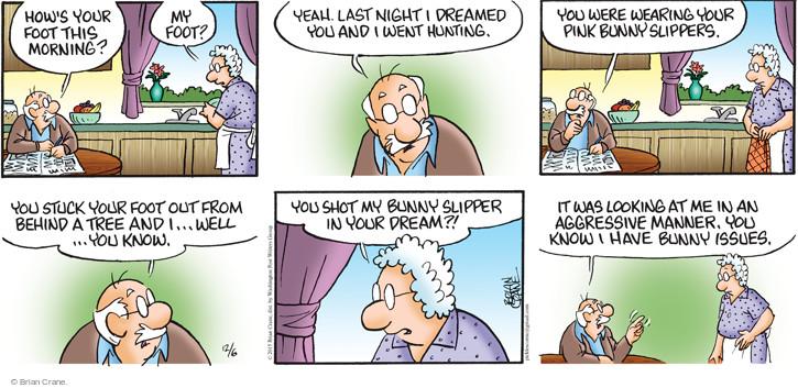 Comic Strip Brian Crane  Pickles 2015-12-06 shot