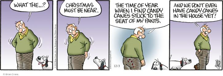 Comic Strip Brian Crane  Pickles 2015-12-03 season