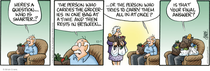 Heres a question … who is smarter … ? The person who carried the groceries in one bag at a time and then rests in between … or the person who tried to carry them all in at once? Is that your final answer?