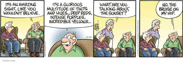 Comic Strip Brian Crane  Pickles 2015-12-22 red