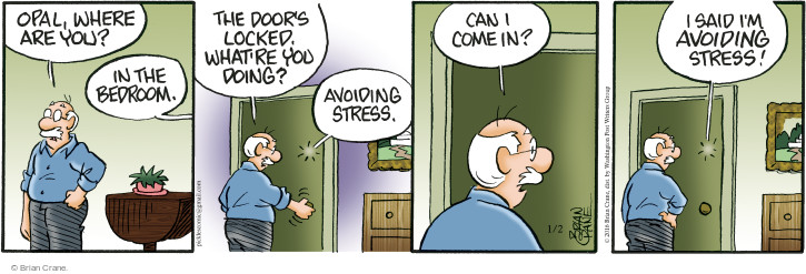 Comic Strip Brian Crane  Pickles 2016-01-02 stress