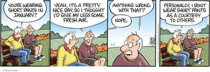 Comic Strip Brian Crane  Pickles 2016-01-07 seasonal