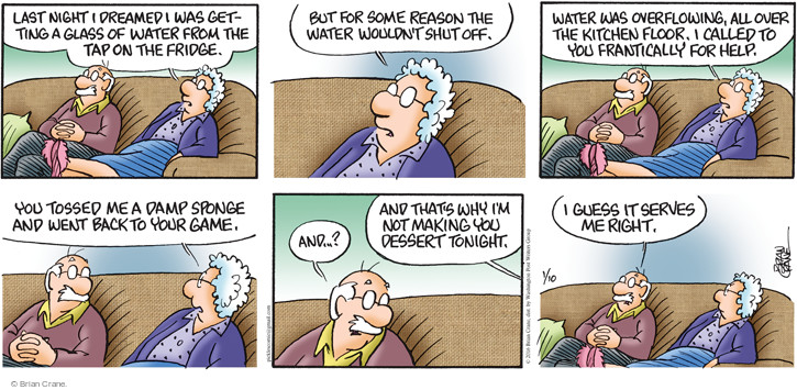 Comic Strip Brian Crane  Pickles 2016-01-10 water