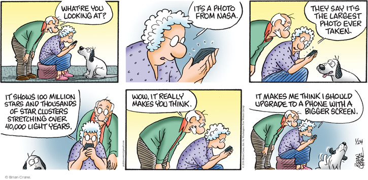 Comic Strip Brian Crane  Pickles 2016-01-24 light