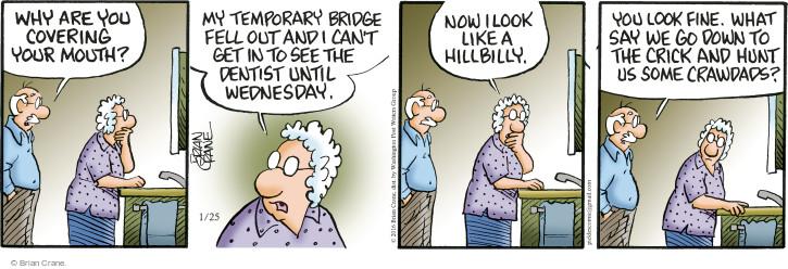 Comic Strip Brian Crane  Pickles 2016-01-25 partial