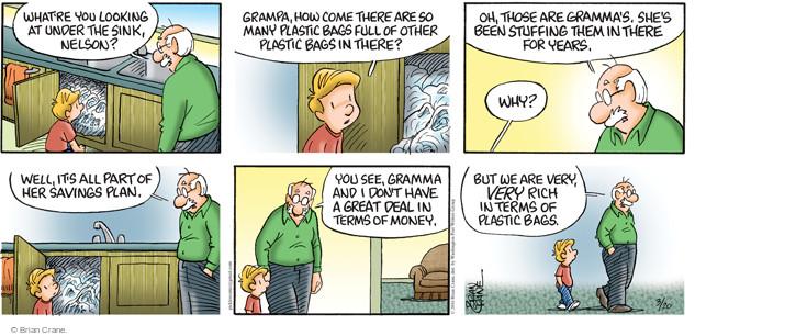 Comic Strip Brian Crane  Pickles 2016-03-20 plastic bag