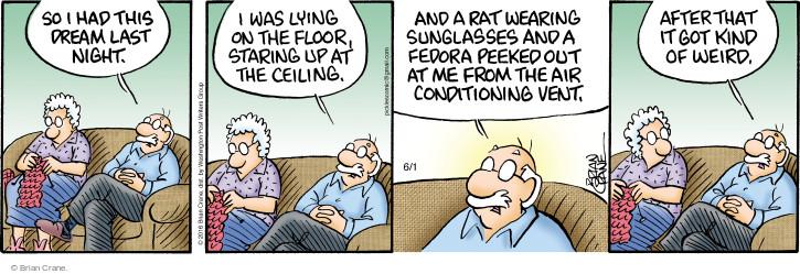 Comic Strip Brian Crane  Pickles 2016-06-01 weird