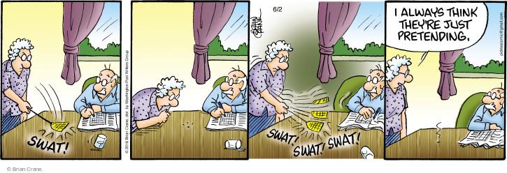 Comic Strip Brian Crane  Pickles 2016-06-02 pretend