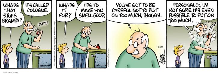 Comic Strip Brian Crane  Pickles 2016-06-24 careful
