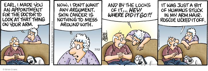 Comic Strip Brian Crane  Pickles 2016-07-12 argument