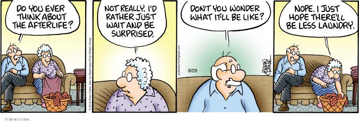Comic Strip Brian Crane  Pickles 2016-08-29 housekeeping