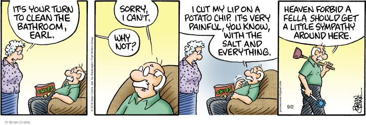 Comic Strip Brian Crane  Pickles 2016-09-02 housekeeping